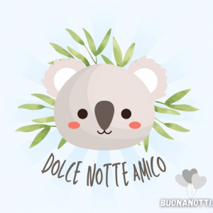 Dolce notte amico